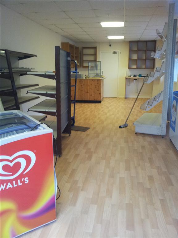 Roger bell flooring services gallery 3 for Belle flooring